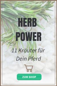 Kräuter Pferd Herb Power