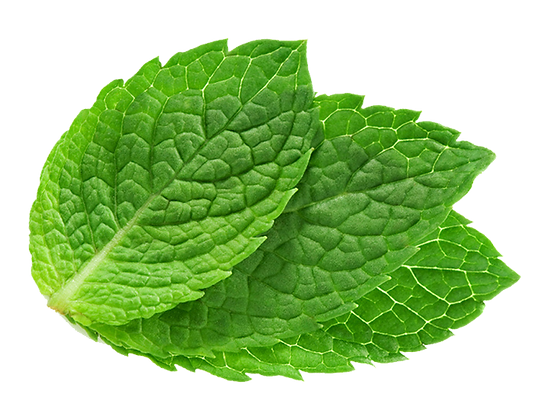 mintleaf.png