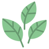 leaves (1).png