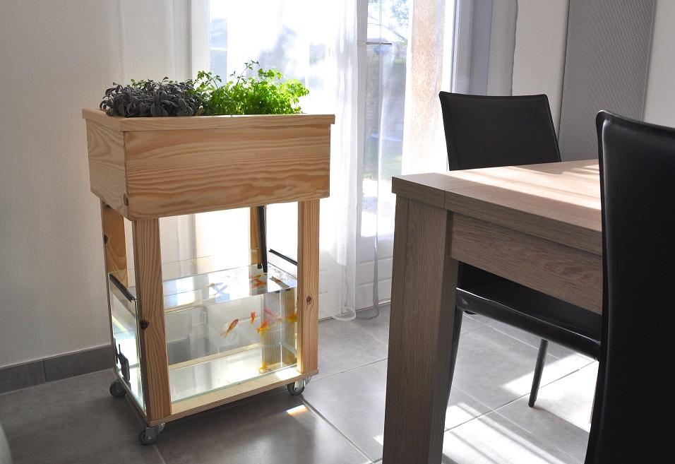 Aquapouss mini kit aquaponie d'intérieur