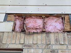 Siding Bee Removal Insulation.jpeg