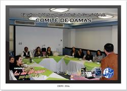 COMITE DE DAMAS EJECUTIVAS