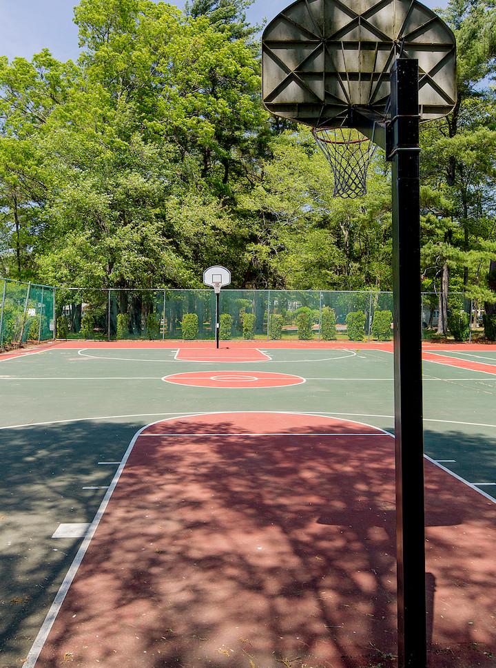 Basketball and Tennis (1).jpg