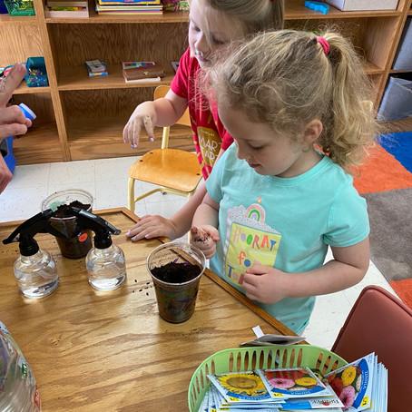 Smart Start Week 17: Tiny Seeds