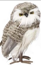 Fur Owl.png