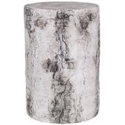 12 Inch Birch Stump.jpeg