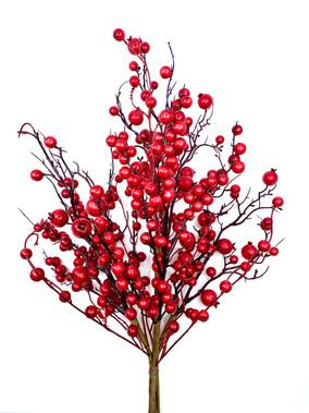 Rosehip Berry Bouquet.jpg