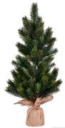 "19"" Balsam Sapling Tree"