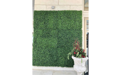 Frontgate Boxwood 3