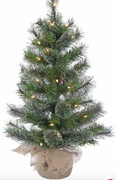 "30"" Cashmere Pine w Lights"
