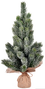 """19"""" Frosted Spruce Sapling Tree"""