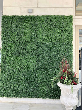 Frontgate Boxwood 3.jpg