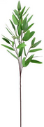 32 Inch Long Eucalyptus Spray.png
