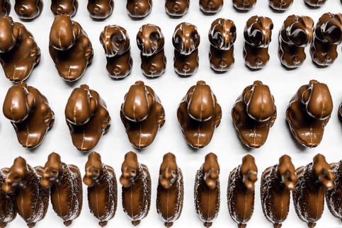 Chocolate Bunnies and Ducks