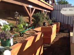 Planting Slope After