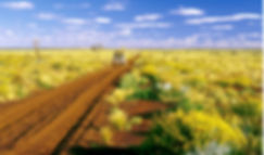 Gunbarrel-Highway-Gibson-Desert.jpg