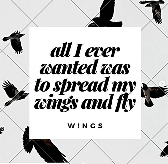 wings aesthetic.png