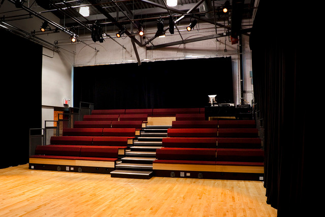 Main Theatre Audience Risers