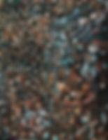 Chats, pastel sèche.jpg
