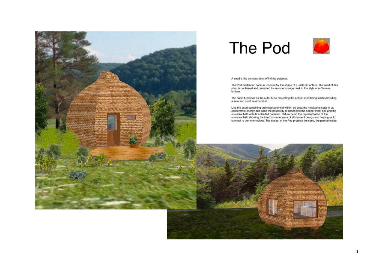 Page 1 The Pod, design competition