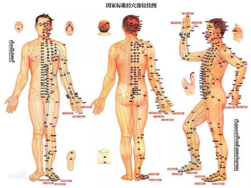 Les Méridiens en médecine traditionnelle chinoise (中医经络)