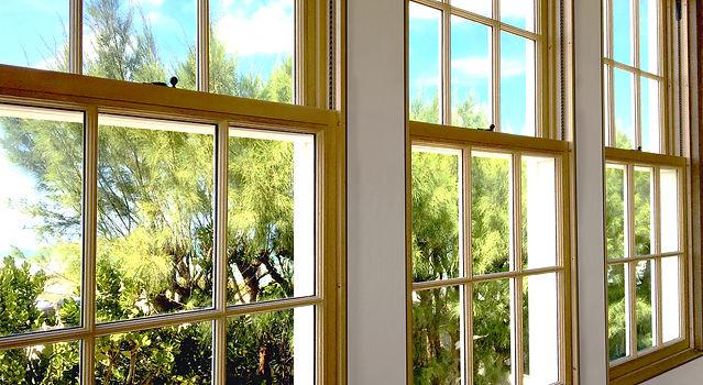 Double Hunge Windows