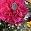 Thumbnail: Leslie Labradorite Ring