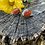 Thumbnail: Red Jasper Cufflinks