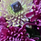 Thumbnail: Purple Pearl Statement Ring