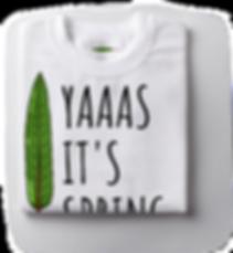 Yaaas-Spring-Folded.png