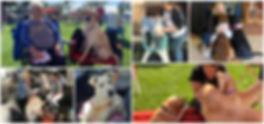 Volunteer Collage2.jpg