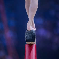 FIG World Cup 2018