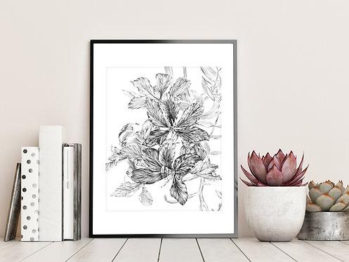 Orchid Tree Fine Art Print