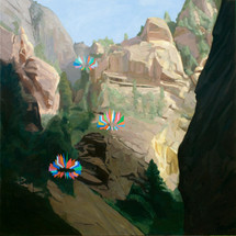 Canyon 2013 oil on canvas 101x101cm sold