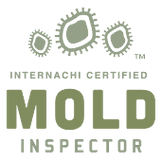 Mold Inspections.  Goodkind Property Inspections.