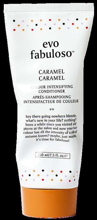 Evo Fabuloso Caramel Colour Enhancing Conditioner - 220ml