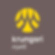 Krungsri bank, logo