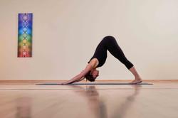 Jetzt neu: Yoga Kurse ab August!