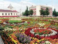 Администрация Новооскольского района