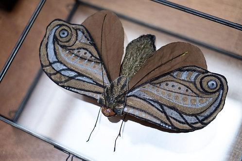 Goldleaf Moth