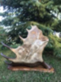 MJ carved award left antler.jpg