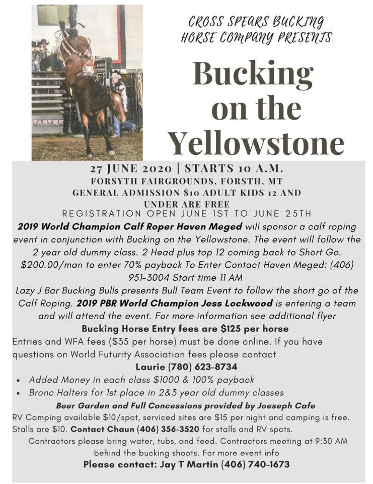 Bucking on the Yellowstone.jpg