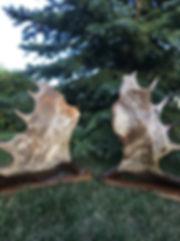 MJ carved awards.jpg