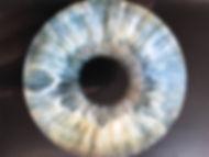 Close Up of Iris