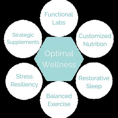 FDN Optimal Health (4).png