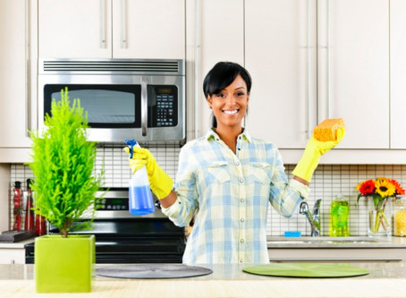 Healthy Cleaning Inside & Out!
