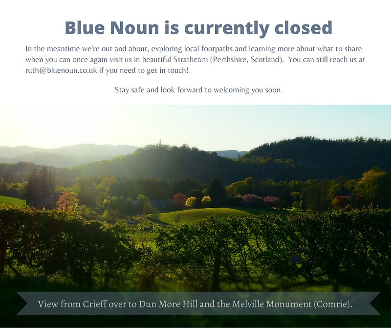Blue Noun is currently closed3-2.jpg