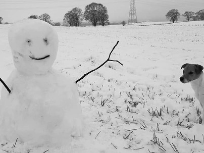"""Strathearn's Snowmen - and why """"every one is beautiful!"""""""