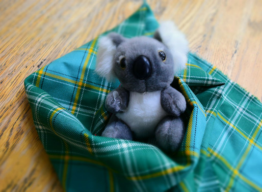 Workshops: Crafting for Australian Animals