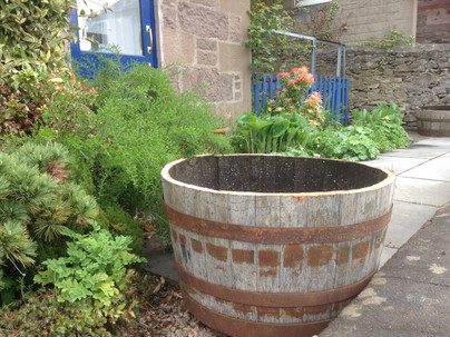Whisky Barrel Planters!